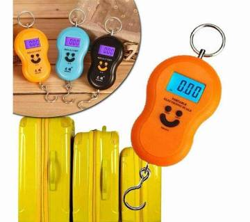 Hanging Weight Hook Scale (1 piece)