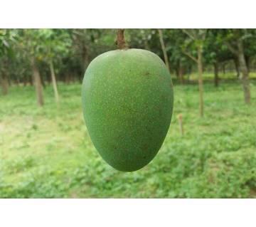 Chapai nababganj Himshagar mangoes 25kg