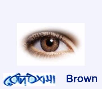 Freshlook  Brown  Contact Lens