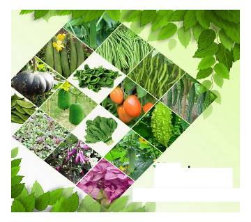 Vegetable Combo Pack (16 types of seeds)