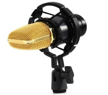BM700 Dynamic Microphone