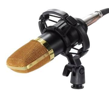 Studio microphone BM-100