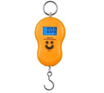 Portable Electronic Travel Scale