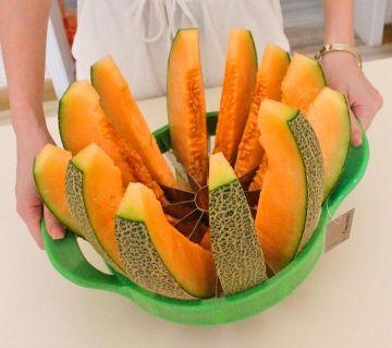 Melor Slicer