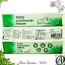 Tesco Freshmint Cavity Protection Toothpaste 100ml (China )