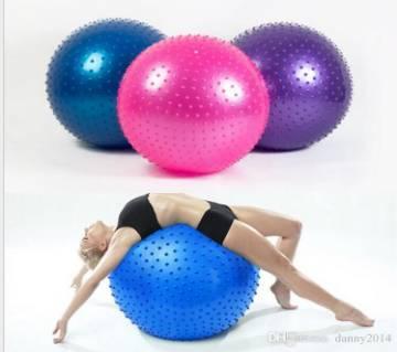 Gym Fitness Ball