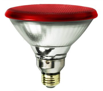 Philips Infraphil Infrared Replacement Bulb 150W