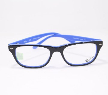 Rayben Sellulide Glasses -copy