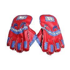 Cricket Keeping Gloves