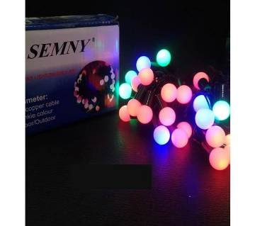 SEMNY Christmas Lights