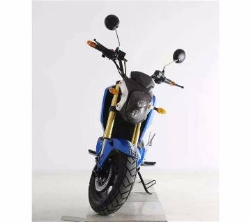 Electric Motor Bike 10 Batteries