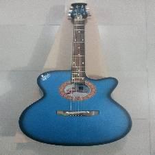 Signature blue black burst গিটার