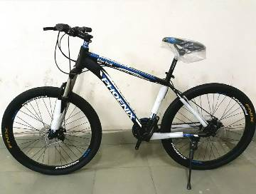 Phoenix Cortex Bicycle