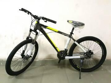 Phoenix Hurricane Bicycle