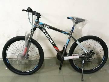 Phoenix Kool Bicycle