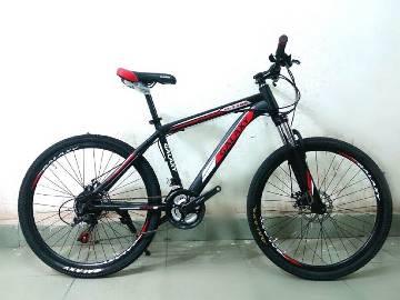 Galaxy High Performance Mountain Bicycle
