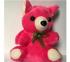 Cute Mini Woolen Teddy