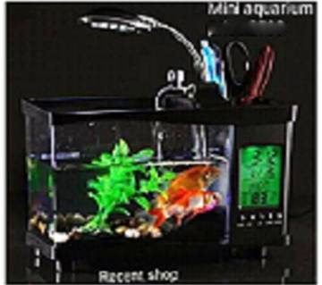 Mini Aquarium with Digital Clock