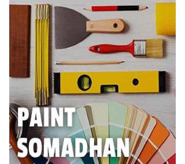 paint somadhan for 100 Sqft
