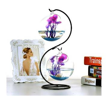 S shape stand & Hanging Glass flower pots