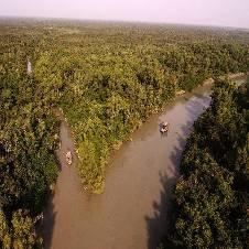 সুন্দরবন ভ্রমন বাংলাদেশ - 6502603