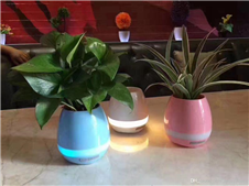 Creative Blue tooth Smart Music Flower Pot