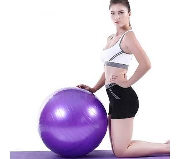 Gym Ball (Purple)