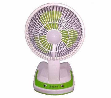 Rechargeable LED lights and fan