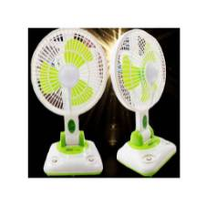 2 in 1 Fan Light