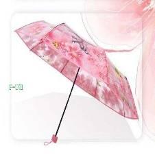 Transparent Auto Fold Umbrella