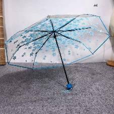 Transparent Auto Fold Umbrella. A