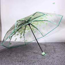 Transparent Auto Fold Umbrella. B