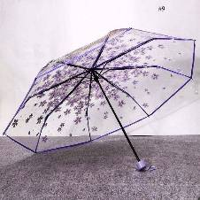 Transparent Auto Fold Umbrella. C