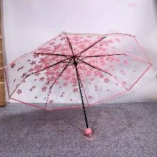 Transparent Auto Fold Umbrella. D
