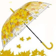 Transparent Auto Fold Umbrella. E