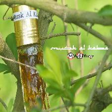 Mask Al Kaba Attar - 6 ml (Saudi Arabia)