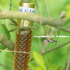 Mukhallad Al Oud Attar - 8 ml (Saudi Arabia)