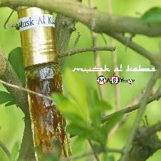 Mukhallad Al Oud Attar - 6 ml (Saudi Arabia)