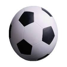 প্রিমিয়ার লিগ ফুটবল (Size: 5)