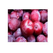 Aloo Bukhara (Plum Fruit) 1kg Newzealand