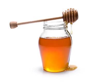 Litchi Flower Honey 500 gram BD