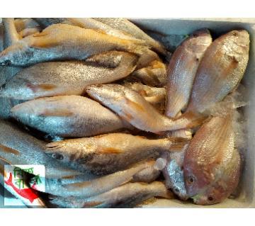 Sea Poa Fish 1kg