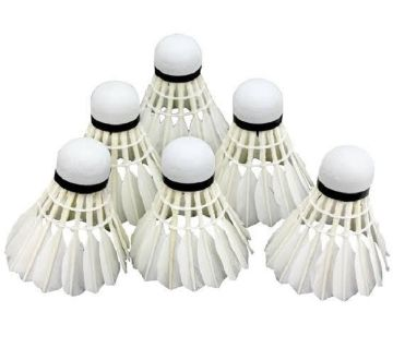 6 Pcs Golden Wing Badminton Shuttlecocks Feather