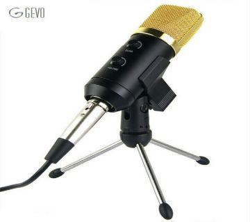 HuaShun  BM100FX Cardioid Pick-Up Condenser Microphone