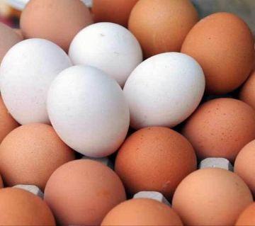 Egg 100pcs