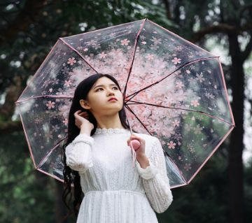 Colourfull Transparent Umbrella