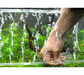 Aquarium Fish Tank Aeration Pump Accessories  Bubble Oxygen Pump Diffuser Strip Gas Stone Mosaic Plastic Strip