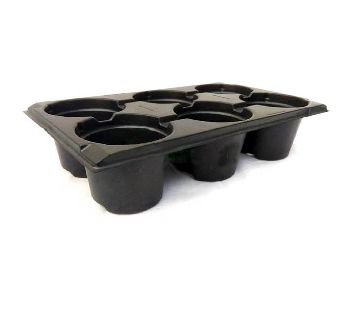 6 Cell Seedling Starter Trays For Seed Germination and Plant Propagation