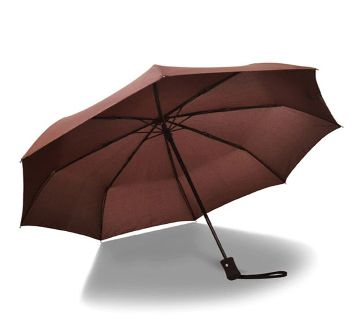 Auto Open Close Windproof Umbrella- Brown