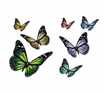 Butterfly Wall Sticker (12pc)